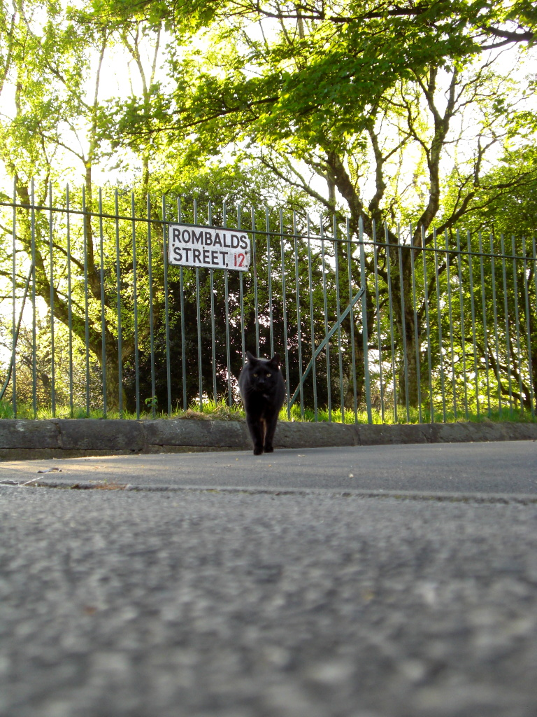 carbon on rombalds street