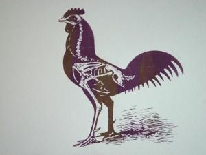 colour-blend-chicken