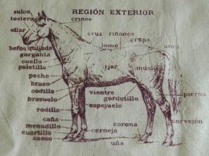 horse-bag